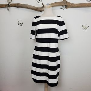 Eliza J black and white striped bold casual dress